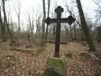 Градозащитники Санкт-Петербурга смогли отстоять Митрофаниевское кладбище