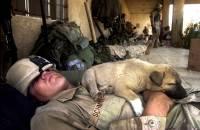При ранении американских солдат будут погружать в искусственный сон