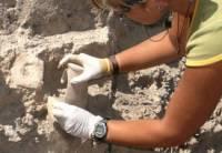 Под Костромой археологи нашли средневековые деньги, оружие и предметы быта