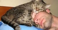 Ученые США выяснили, что является лучшим природным снотворным