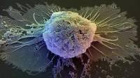 Ученые установили связь между депрессией и развитием рака