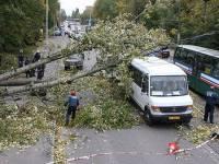 На Чехию обрушился ураган: погибли два человека