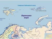 Найдено тело одного из погибших при крушении российского Ми-8 у Шпицбергена