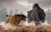 Якутские палеонтологи приступают к исследованию пещерного львенка