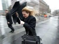В Москве и столичном регионе объявили штормовое предупреждение