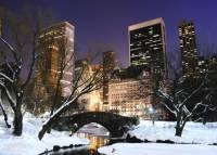 Взрыв в центре Нью-Йорка признан терактом
