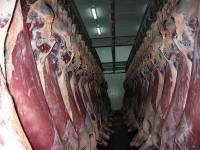 Россия приостанавливает поставки говядины с предприятий Минской области