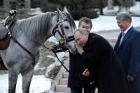 Президент Киргизии подарил Владимиру Путину породистого скакуна