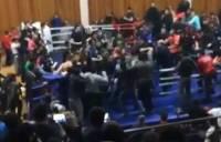 Союз ММА проведет разбирательство по факту массовой драки на турнире в Дагестане (видео)