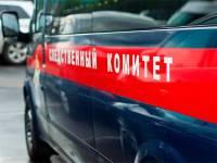 На Урале при обрушении кровли в частном доме погиб ребенок