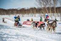 Многодетный камчатский священник, участвовавший в «Берингии-2017», вышел из гонки, пожалев собак
