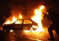 За сбитую собаку китаянка сожгла почти 10 машин