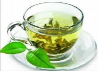Американский школьник доказал эффективность зеленого чая в борьбе с раком