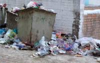 В Москве не смогли спасти питона, выброшенного на улицу