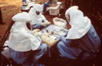 В Либерии число заразившихся неизвестной смертельной болезнью возросло до 28 человек, 12 скончались