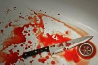 В Австралии женщина убила 8-х детей, потому что ей приказали голоса птиц