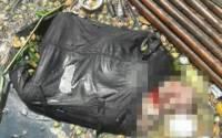В Москве задержаны подозреваемые в убийстве женщин, части тела которых были найдены под мостом