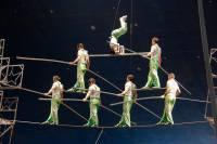 В Швейцарии сорвалась с высоты российская цирковая акробатка