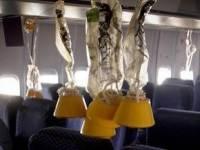 Летевший в Москву самолет вернулся в Анталью из-за разгерметизации