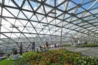 Парк «Зарядье» после уничтожения около 10 тысяч растений меняет режим работы