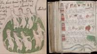 Ученые выяснили, на каком языке написан манускрипт Войнича