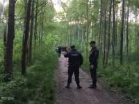 Пропавшая под Томском школьница найдена в лесу убитой