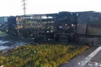 В Тверской области 13 человек погибли при столкновении автобуса и маршрутки