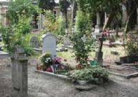 В Венеции выставят на торги места на кладбище, где похоронен Бродский