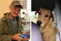 Американец чуть не погиб от выстрела собственной собаки