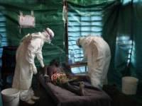 Эксперты ВОЗ сделали прогноз о продолжительности эпидемии лихорадки Эбола в ДРК