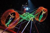 Артисты Росгосцирка стали победителями международного фестиваля в Китае