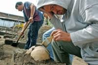 Сибирские археологи нашли захоронения из птичьих клювов
