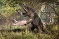 На побережье Аргентины обнаружены останки древнего гигантского ленивца