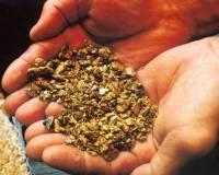 В Башкирии найдены залежи золота и серебра
