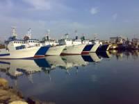 В Тунисе задержали судно, следовавшее из Новороссийска