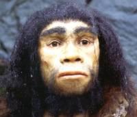 В Индонезии найдена стоянка древних людей неизвестного вида
