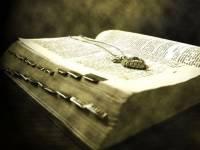 На Корсике найдены письма Наполеона и уникальная книга по египтологии