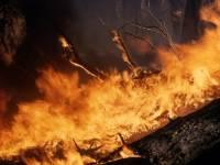 В Забайкалье загорелись пласты угля на месторождении