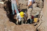 В Китае при раскопках гробницы найдены останки неизвестного животного