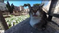 Недовольный римский кот прославился, попав на Google карты