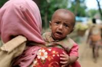 США: военная кампания против рохинджа в Мьянме была хорошо подготовлена