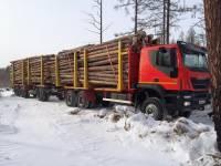 Под Иркутском маршрутка врезалась в лесовоз: погибли 4 человека, пять в больнице