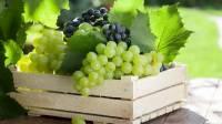 В Австралии вновь начали находить швейные иглы в ягодах и фруктах