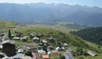 В Панкисском ущелье произошла перестрелка: один человек убит, четверо ранены
