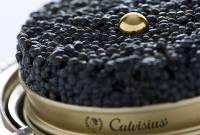 В России более чем на 20% выросло производство черной икры
