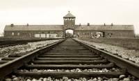 Amazon убрал из продажи новогодние украшения с изображениями Освенцима