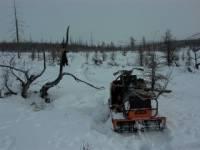 Камчатский школьник погиб, врезавшись в дерево на снегоходе, три человека в больнице