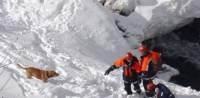 Поиски туристов, погибших под лавиной на Алтае, возобновят через полтора месяца