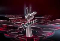 Руководство «Первого канала» аннулировало результаты последнего сезона шоу «Голос. Дети»