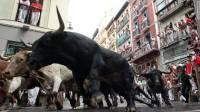 В Испании разъяренные быки растоптали толпу людей